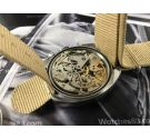 Vintage ELIX chronograph hand winding watch Cal Valjoux 7734 *** SPECTACULAR ***